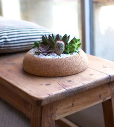 Large Cork Planter by Melanie Abrantes Designs on Scoutmob Shoppe