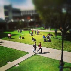 ¡Feliz inicio de semana! #URL #Landivar #landivarianos #universidad #campus