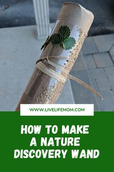 Simple nature discovery activity for your baby and toddler Nature Activities, Spring Activities, Activities To Do, Infant Activities, Edible Finger Paints, Sequencing Cards, Toilet Paper Crafts, Frugal Family, Busy Bags