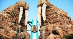 Walrus Splash at Chimelong Ocean Kingdom, Zhuhai, #China