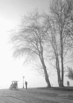 Lakeside by Dimitris Smixiotis on Country Roads, Explore, Outdoor, Outdoors, Exploring, Outdoor Living, Garden