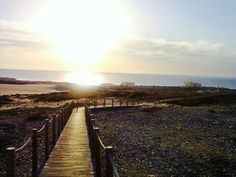 Praia da Cresmina Railroad Tracks, Vineyard, Portugal, Country, Outdoor, The Beach, Outdoors, Rural Area, Vine Yard