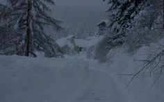 Solo neve by stefano.casi