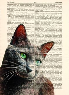 Mixed Media – Cat Art Book Print Cat Mixed Media – a unique product by Dictionary-vintage-book-page on DaWanda