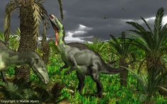 Camptosaurus, Late Jurassic, Discovered by Marsh - 1885