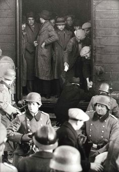 The deportation of French Jews in Marseilles by SS guards and Vichy police, January seen thousands of Holocaust photos.the process where their government came in, LIED to everyone, and the murdered them all. History Museum, World History, Persecution, Interesting History, World War Two, Historical Photos, Christians, Blanco Y Negro, Marseille