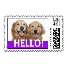 Golden Retriever Hello Postage Stamp. Sold to a customer in Duluth, MN :)