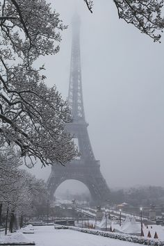 The Eiffel Tower-Paris in the winter. Gorgeous.