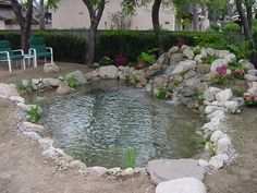 Dual Pump koi pond design. Could be cute in the middle of a patio....
