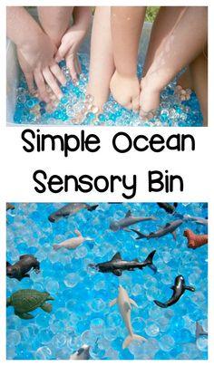 Super Simple Ocean Sensory Bin Kids Will Love - Perfect for a kindergarten or preschool ocean theme, or for a preschool summer camp
