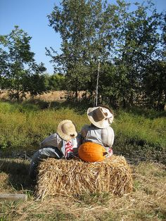 Fishing scarecrows.  Another that would be good for me.. since I live by the lake.