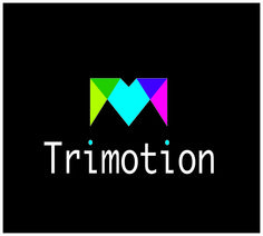 trimotion logo voor Ludo Delmelle life is all about balance