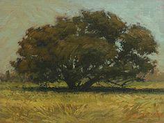 Paul Ferney:  Harvest Tree