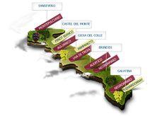 Giovedì di settimana prossima vedrà protagonisti i vini della Puglia per le nostre degustazioni didattiche regionali.  Per informazioni ed iscrizioni: http://www.accademiavino.it/lezioni
