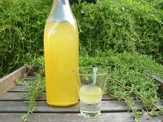 Homemade Limoncello aka Sunshine in a Bottle Making Limoncello, Limoncello Recipe, Homemade Limoncello, Mixed Drinks, Fun Drinks, Yummy Drinks, Alcoholic Drinks, Beverages, Cocktails