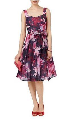 Phase Eight - Dresses at Debenhams.com