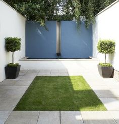 formal lawn and coloured wall