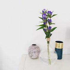 Neue Vasen & Blumen im Haus ❤