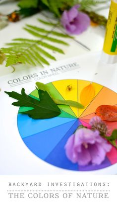 Backyard Nature Science: The Colors of Nature (video activity + printable) ~ Mastering Montessori ❤️ Outdoor Education, Outdoor Learning, Kids Learning, Learning Colors, Early Education, Nature Activities, Science Activities, Activities For Kids, Nature Gif
