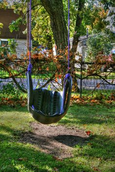 Tire swing... who doesn't love one of them!