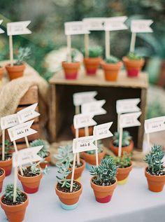 Succulent Escort Cards and Favors | Brides.com