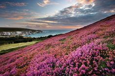 Explore the Isle of Wight with HF Holidays