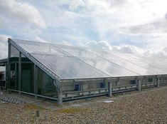 Cable supported single skin etfe roof
