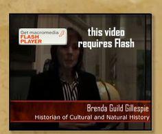 American History Resource