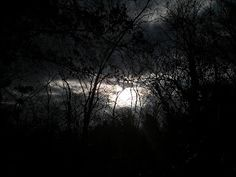 I Portali della Luce: Alla mia fiamma gemella: la distanza