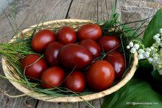 Cum se vopsesc ouale cu coji de ceapa - vopsea naturala. Cum vopsim ouale fara chimicale, cu coji de ceapa care sunt la indemana oricui si care contin