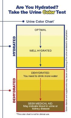 Look at the color of your urine to get a rough estimate of how hydrated you are!