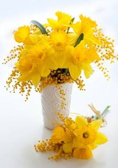 Photo about Bouquet of yellow narcissus and mimosa. Image of blossom, holiday, bloom - 23279619 Good Morning Cards, Art Nouveau Flowers, Corporate Flowers, Beautiful Flower Arrangements, Flower Aesthetic, Amazing Flowers, Yellow Flowers, Amazing Gardens, Birthday Cards