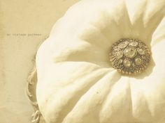 white pumpkin with brooch