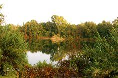 Un lago in autunno!