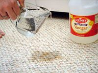 Cleaning dog urine out of carpet!!
