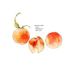 Peach Aesthetic, Aesthetic Food, Illustration Inspiration, Illustration Art, Food Doodles, Cute Food Drawings, Food Sketch, Peach Fruit, Watercolor Food