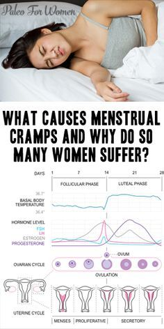 Cramps: An Introduction What causes menstrual cramps? And why do nearly half of women suffer from them?What causes menstrual cramps? And why do nearly half of women suffer from them? Leiden, Period Cramp Relief, Period Cramp Remedies, Pms Remedies, Remedies For Menstrual Cramps, Menstrual Cramps Relief, Period Hacks, Period Tips, Menstrual Cycle