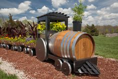 """""""The FOTA (Friends of the Arboretum) Express""""  Created by volunteers from 3 oaken wine barrels, the train is planted in cannus and sun annuals and perreniels near the train garden."""