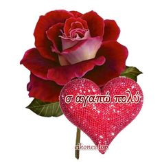 I Love You, My Love, Good Night Quotes, Forever Love, Love Cards, The Good Place, Valentines Day, Messages, Rose