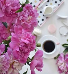 ༺ Beautiful ~ Inside and Out ༻ Sunday Coffee, Coffee Time, Beautiful Inside And Out, Beautiful Flowers, Bookstagram, Happy Day, Old World, Peonies, Bloom