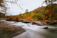 Hike the White Loop at Sweetwater Creek, Georgia