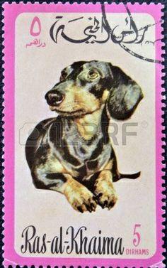 Ras Al-Khaimah -  1.971  Un sello impreso en Ras al-Khaimah muestra un perro Dachshund