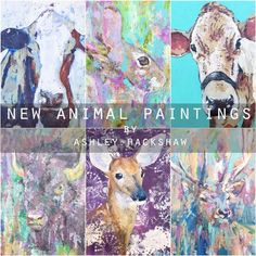 New Animal Paintings by Ashley Hackshaw / Lil Blue Boo Blog - Cow paintings