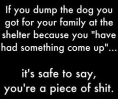 """Courtesy of Chris Hoar, co-founder of Pet Pardons (i mean, okay, sometimes people do have true, legitimate reasons and honestly don't want to get rid of their pets, but they really, really can't take care of them...those people i do not judge. but those who are simply bored of the pet or whatever...it's safe to say, you're a piece of shit."""""""