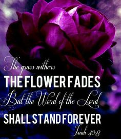 The word shall stand forever.