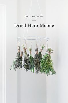 as we start approaching winter and the farmers market bounty begins to dwindle, an herb drying rack is a great way to ensure you'll have your favorite herbs at the ready well through the season. whether you're an avid gardener or a market shopper, you can craft your own version of a dried herb mobile using my guide.
