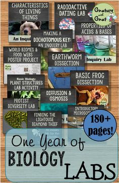 This is bundle of 28 Biology or Life Science labs and activities that will last you throughout the entire year!