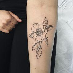 "Wild rose by Olivia ""Semi-Professional Cat Whisperer"" Harrison Baby Tattoos, Dream Tattoos, Rose Tattoos, Tatoos, Symbolic Tattoos, Unique Tattoos, Wild Rose Tattoo, Pocket Watch Tattoos, Mother Nature Tattoos"