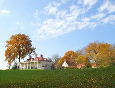 Mt. Vernon in the fall