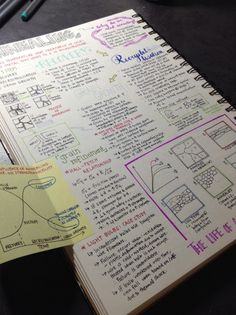 I like this style of study notes.  Some pics, but mostly organized print.